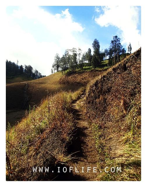 Track ke bukit nicholas