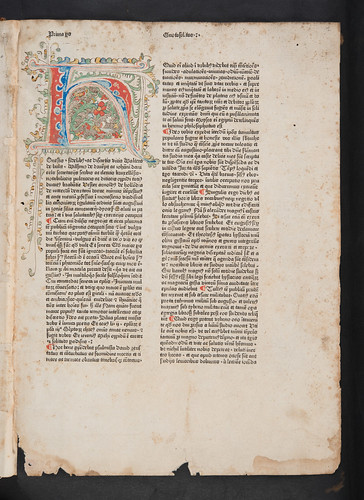 Penwork decorated initial in Arnoldus de Geilhoven: Gnotosolitos, sive Speculum conscientiae
