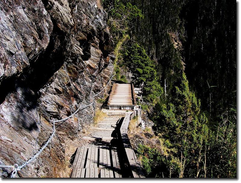 登山步道沿途景觀 3