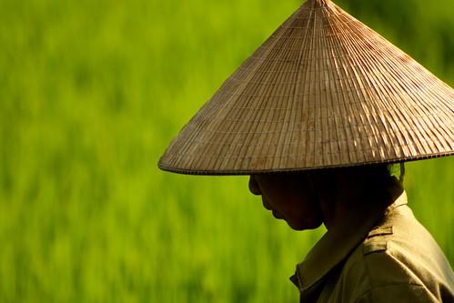 Video: Through Vietnam, Cambodia and Laos. - Video: Through Vietnam, Cambodia and Laos.