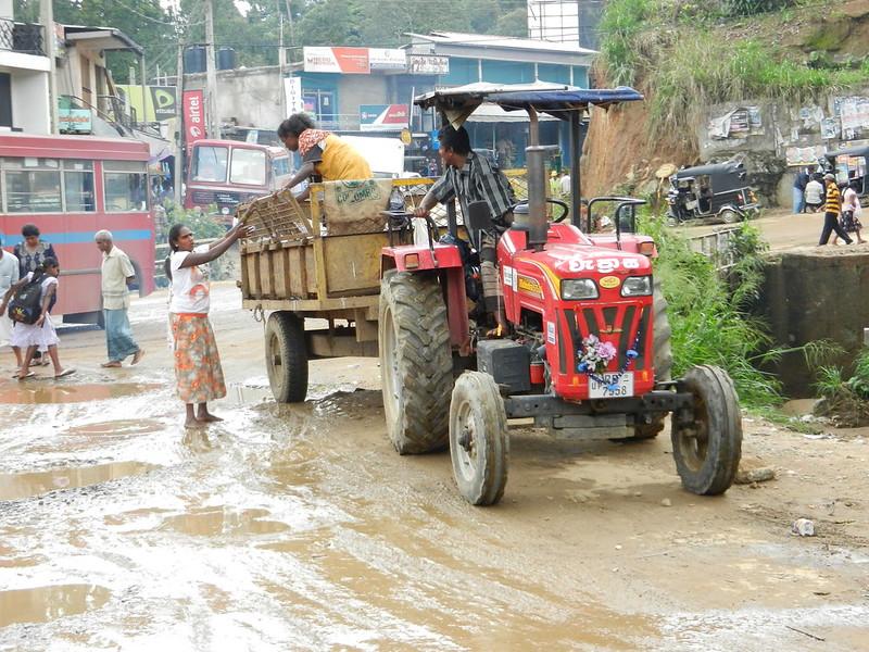 Шри Ланка. Дороги и транспорт.