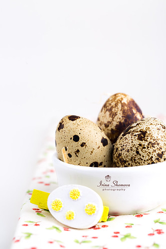Easter decoration - quail eggs in a bowl