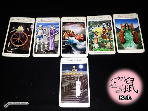 rat zodiac tarot