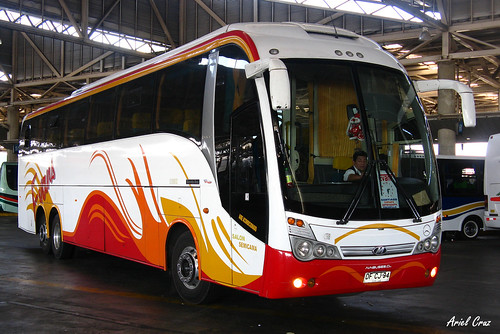 Buses Evans en Terminal San Borja | Maxibus Lince 3.65 / DFCJ94