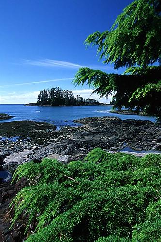 Schooner Cove, Pacific Rim, West Coast Vancouver Island, British Columbia, Canada