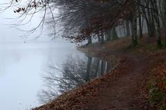 Sur le chemin... - Photo of Thianges