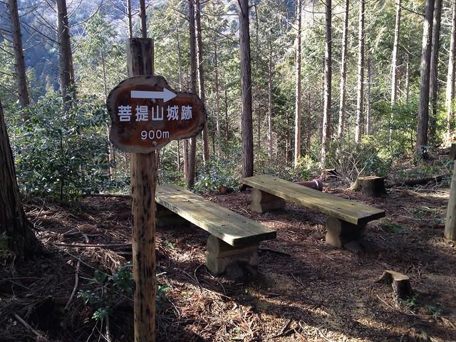 菩提山城跡ハイキングコース 菩提山城跡まで900m地点