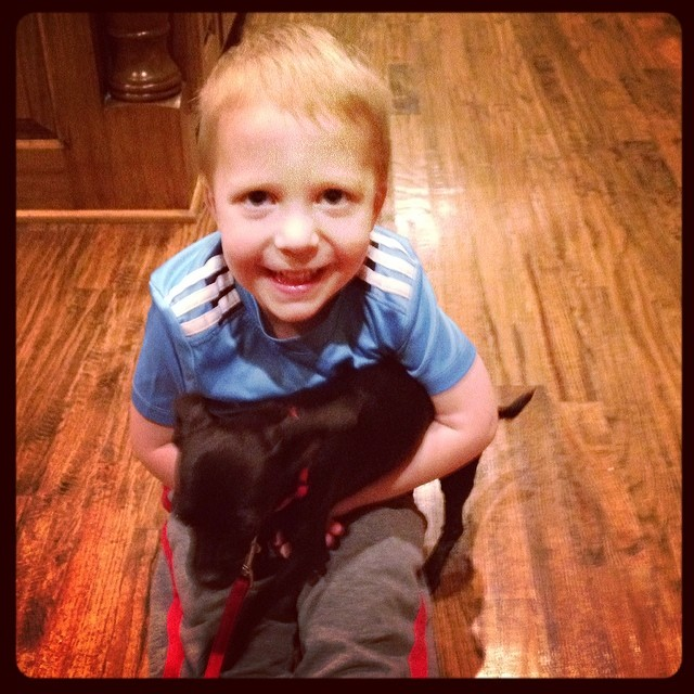 Owen couldn't be more thrilled with our dog sitting for three days. #overLOVE