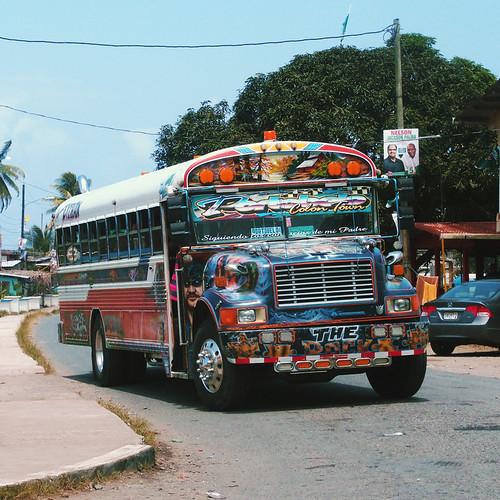 Panama type