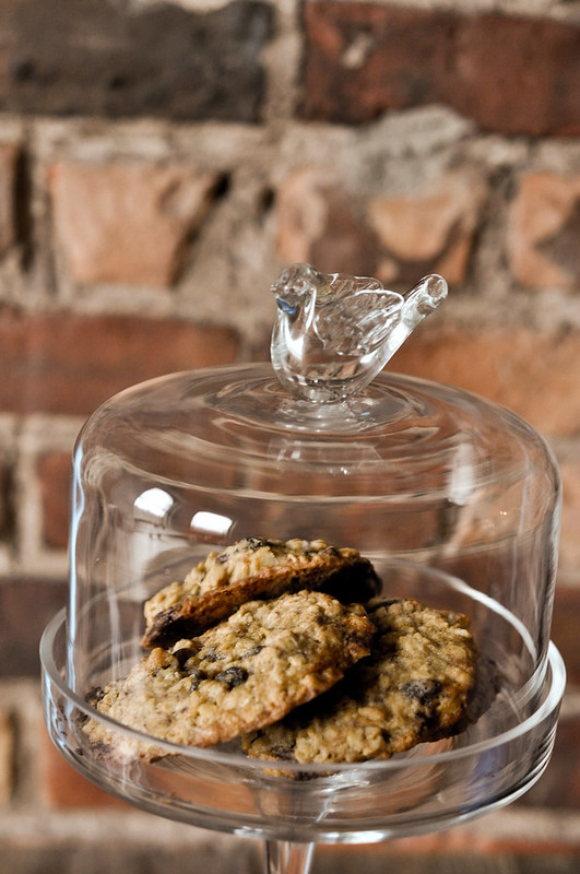 Oatmeal Walnut Raisin Chocolate Cookies