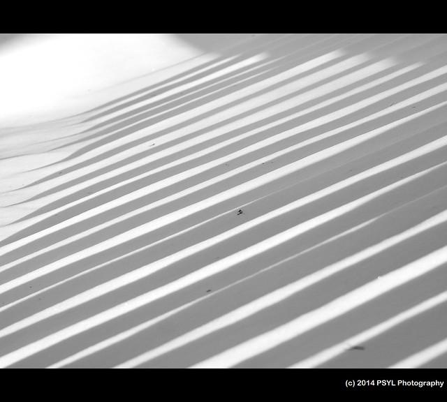 Staircase Stripes