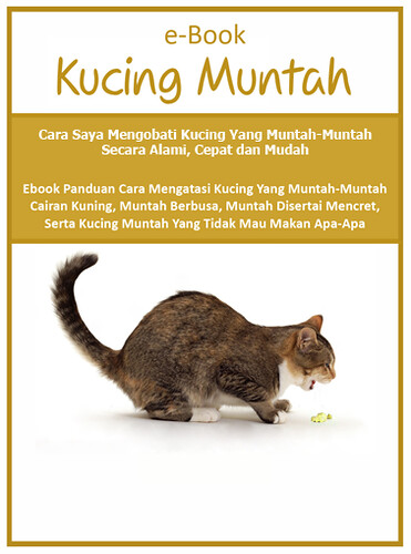 Ebook Kucing 2nd Small