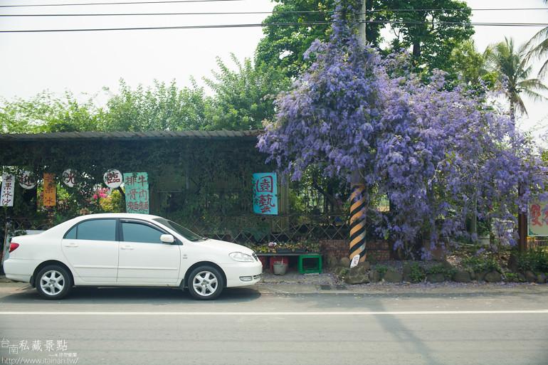 台南私藏景點--玉井雙秀園 (2)