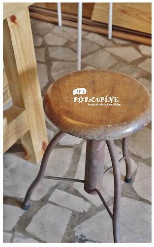 ari-porcupine-30