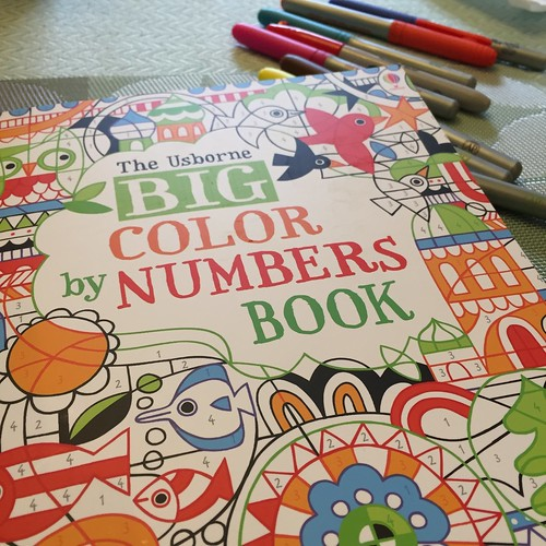 Usborne Big Color by Numbers Book
