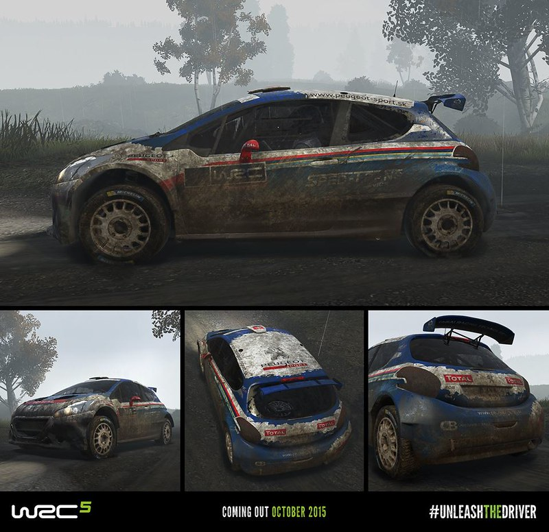 WRC 5 Dirt effects