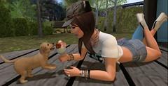 Puppy love!  --- Fabfree Photo Challenge