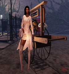 DS - Ghee - Rosa Dress & Pointy Thigh Boots