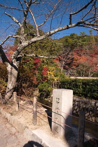 【写真】2012 紅葉 : 哲学の道/2020-10-03/IMGP7370