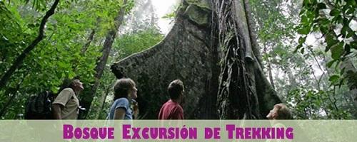 Costa Rica Trekking