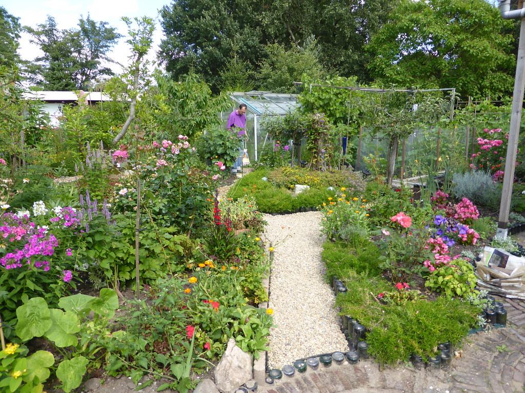 P1000476 onze tuin