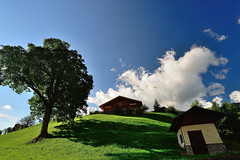 Wooden Houses, Trees, Meadows and the Blue Sky