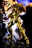 [Imagens] Saint Cloth Myth EX Dokho de Libra  10519186116_01bef72f15_t