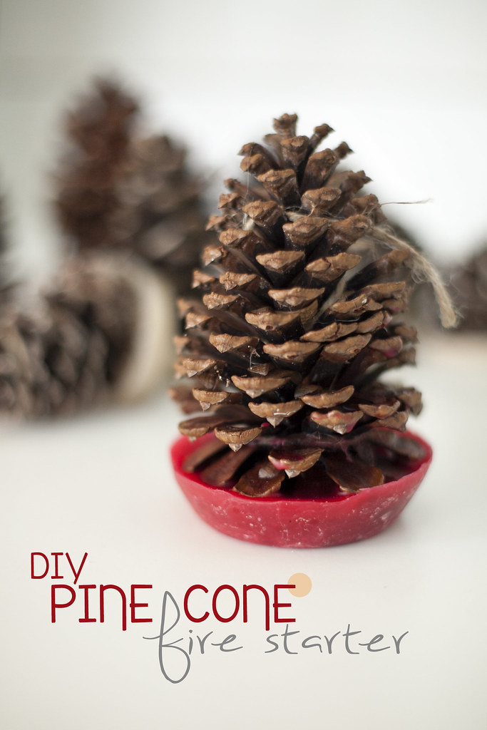DIY pinecone firestarter