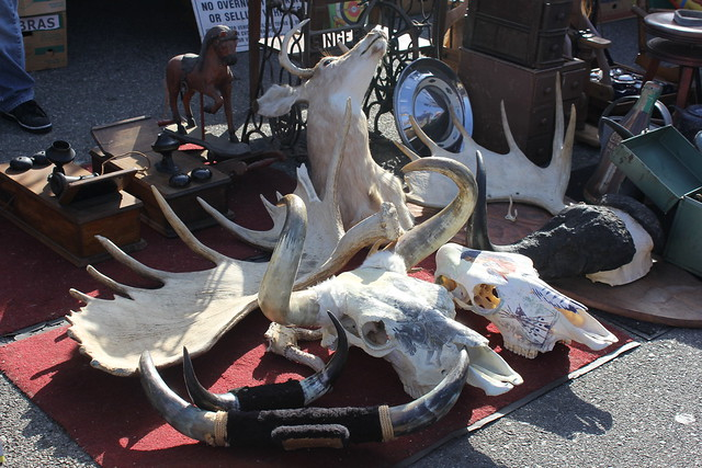 Long Beach Antique Market November 2013