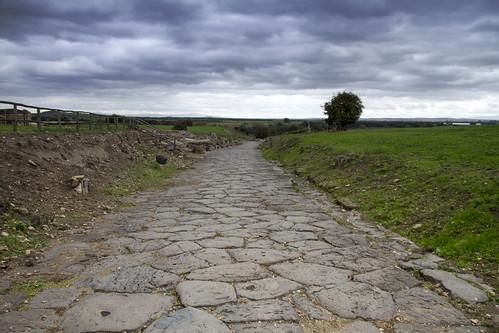 [4095] Vulci, Strada Romana