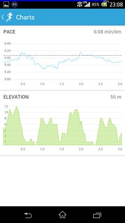20140315_RunKeeper(Running)charts