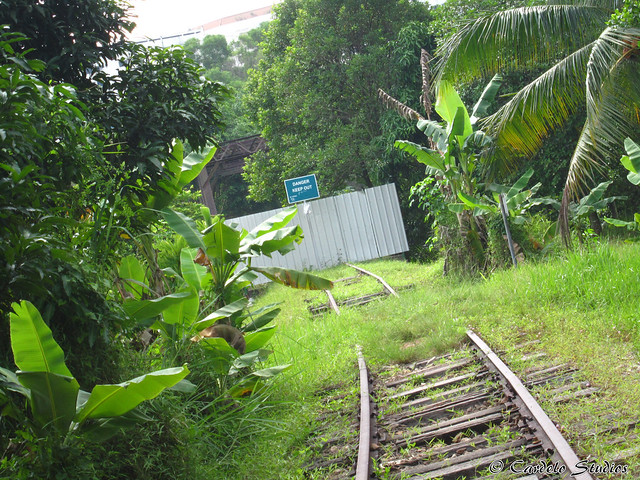 Old Jurong Line - Sunset Way Railway Bridge 03