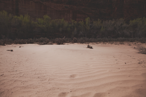roaming the desert // www.inthelittleredhouse.blogspot.com