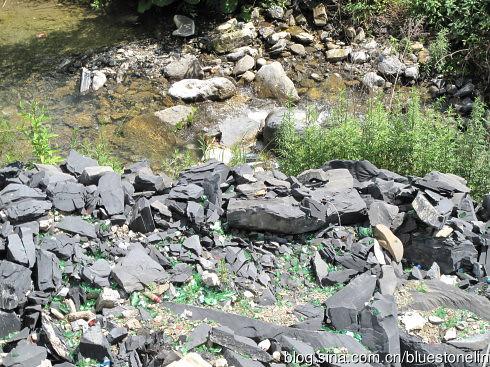 神農架一處溪流,成了臨時垃圾場,啤酒空瓶無人回收隨處丟棄於河道,目睹現狀,令人遺憾與痛心。