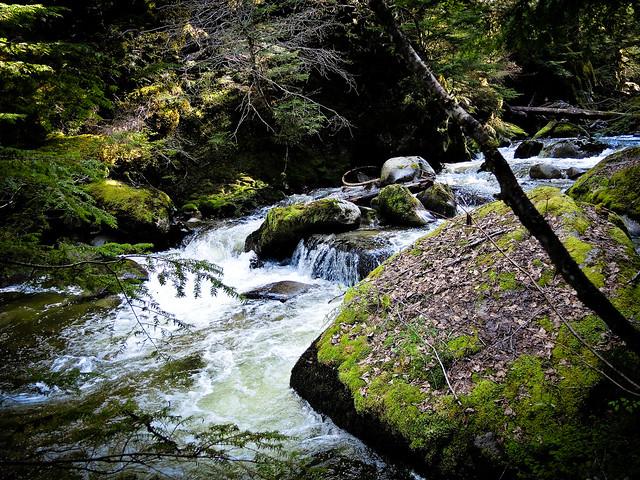 Pemberton Creek