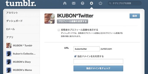 Tumblr Domain