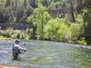 Paul, Upper Sacramento River