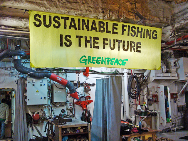 sustainable fishing is the future