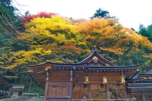 【写真】紅葉 : 貴船神社