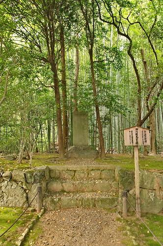 【写真】2013 青葉 : 地蔵院/2021-07-28/IMGP0962