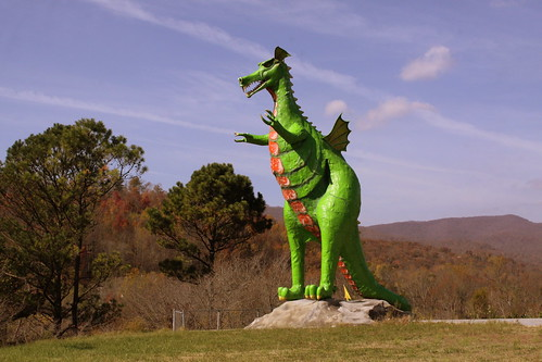 Random East Tennessee Dragon
