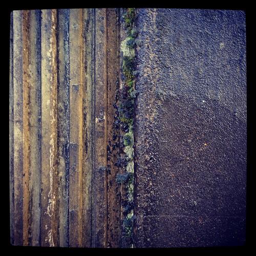 carhole by Nature Morte