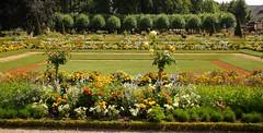 Jardin de l'Archevêché