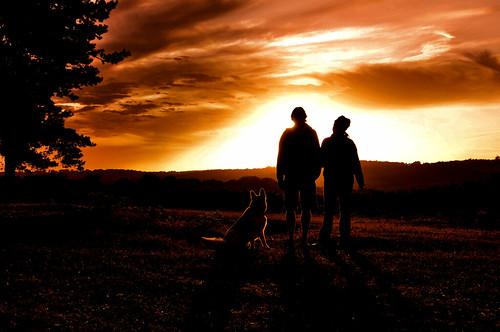 sunset ashdownforest
