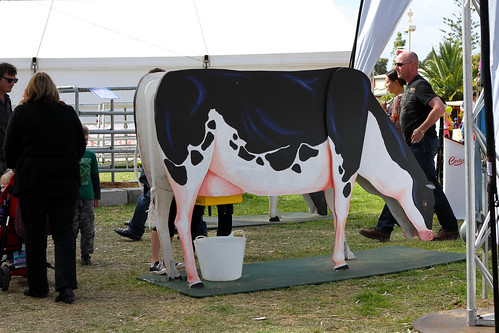 Perth Royal Show 2013 - Cow-Milking Simulator