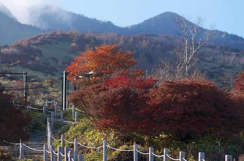 天空尾根の紅葉