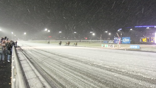 SnapShot | Wishing Stone In The Snow Closes In On The Wire First In Race 2 #Meadowlands