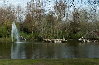 Le lac de St Jame's Park