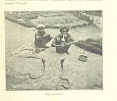"British Library digitised image from page 229 of ""Negyvénezer mértföld vitorlával és gőzzel [Illustrated.]"""