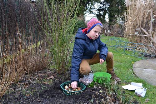 schon was los im neuen Gartenjahr
